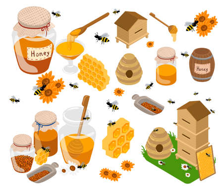 Honey products vector flat illustrations. Jars and other honey products on the table. Organic and natural. Banks, bees, honeycombs, bee hives, sunflower isolated on white. Web site and mobile app