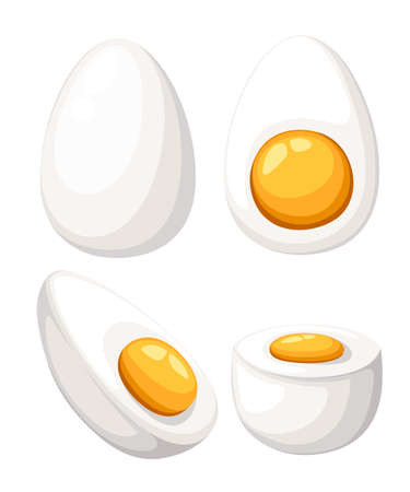 Cartoon egg isolated on white background. Set of boiled, half-sliced eggs. Vector illustration. Eggs in various forms. Web site page and mobile app design
