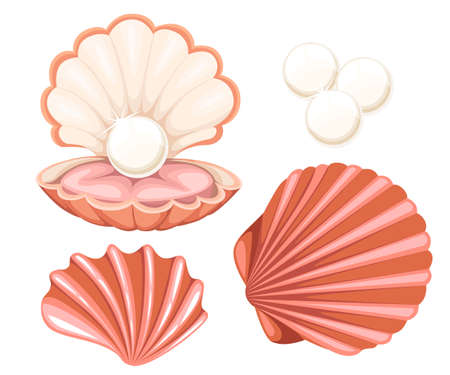 Pink seashell with pearl. Vector illustration isolated on white background. Website page and mobile app design Çizim