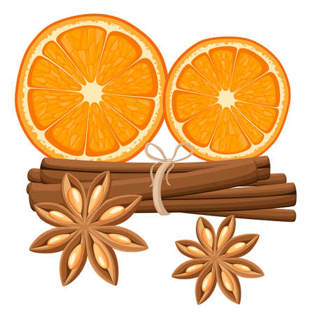 Cinnamon stick, star anise and slices of oranges. Isolated illustration on white background. Website page and mobile app
