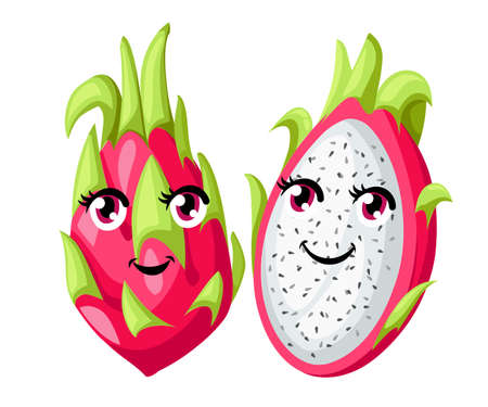 Vector whole and sliced vivid pink dragon fruit isolated on white background. Fruit with eyes. Website page and mobile app design.