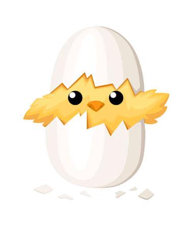 Funny chicken in egg for Easter decoration cartoon vector flat clip art yellow bird in an egg shell vector illustration on white background. Vectores