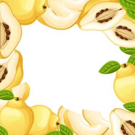 Quince with leaves whole and slices of quinces. Vector illustration of quince. Vector illustration for decorative poster, emblem natural product, farmers market. Website page and mobile app design.