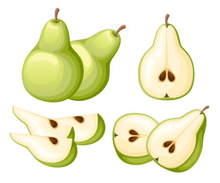 Pear and slices of pears. Vector illustration of pears. Vector illustration for decorative poster, emblem natural product, farmers market. Website page and mobile app design.  イラスト・ベクター素材