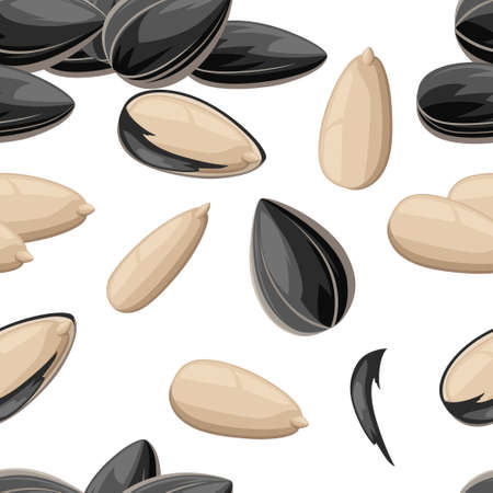 Seamless pattern of sunflower seeds in a shell and without ready to eat snack vector illustration on white background web site page and mobile app design.