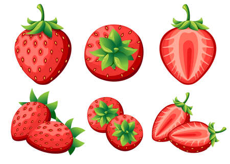 Strawberry and slices of strawberrys. Vector illustration of strawberrys. Vector illustration for decorative poster, emblem natural product, farmers market. Website page and mobile app design