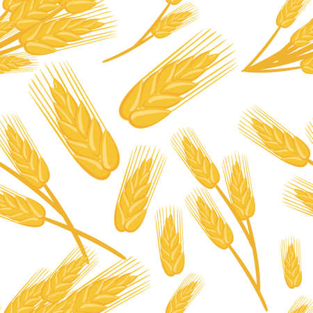 Seamless pattern of bunches of wheat ingredient for bread baking organic vegetarian food vector illustration on white background web site page and mobile app design.