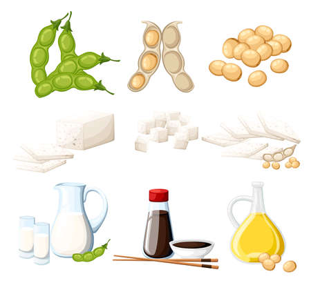 Set of soy products milk and oil in glass jug soy sauce in transparent bottle tofu and beans organic vegetarian food vector illustration isolated on white background web site page and mobile app.