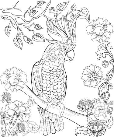 Parrot for coloring book Anti stress coloring for adult Tattoo stencil.