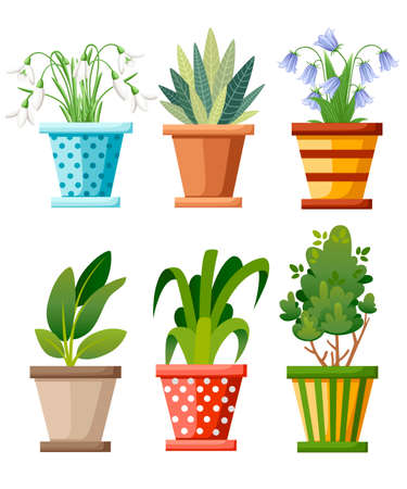 Indoor and outdoor landscape garden potted plants. Vector set of green plant in pot, illustration of flowerpot bloom. Vector illustration isolated on white background. Web site page and mobile app.