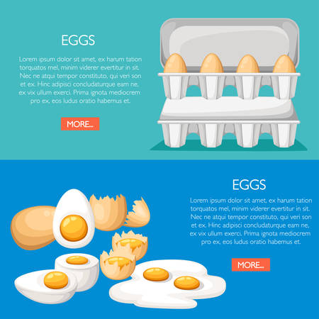 Egg and cracked egg in various forms. Eggs in cardboard box. Concept of poultry farm. Vector illustration with place for your text. Cartoon style design. Green and blue background.