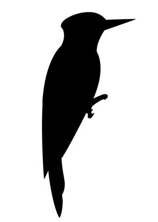 Black silhouette. Woodpecker bird. Flat cartoon character design. Black bird icon. Cute woodpecker template. Vector illustration isolated on white background.