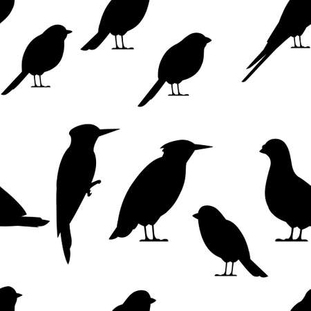 Seamless pattern. Bird black silhouette. Pigeon, Sparrow, Titmouse, Swallow, Woodpecker, Starling, Bullfinch. Flat birds icon. Vector illustration on white background.