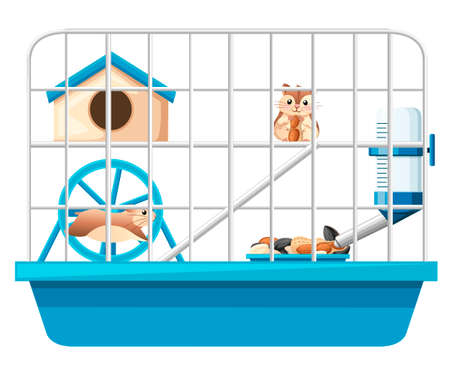 Cute hamster sit and holding nut, another hamster running in wheel. Hamster cage, wheel and automatic drinker. Cartoon character design. Flat vector illustration on white background.