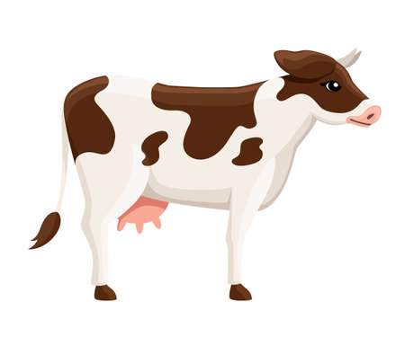 Cute white brown cow. Farm domestic animal. Flat style animal design. Vector illustration isolated on white background. Illustration