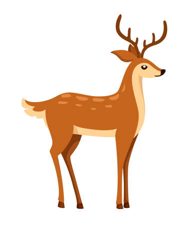 Brown deer. Hoofed ruminant mammals. Cartoon animal design. Cute deer with antlers. Flat vector illustration isolated on white background.