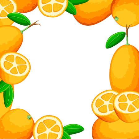 Colorful pattern. Exotic fruit kumquat with green leaves. Fresh fruit cartoon style. Flat vector illustration on white background. Whole and cut orange juice kumquat. Illustration