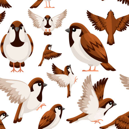 Seamless pattern. Colorful Icon set of Sparrow bird. Flat cartoon character design. Bird icon in different side of view. Cute sparrow for world sparrow day. Vector illustration on white background.