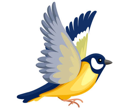 Side view of flying Titmouse bird. Flat cartoon character design. Colorful bird icon. Cute titmouse template. Vector illustration isolated on white background.
