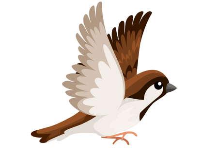 Vista lateral del pájaro gorrión volador. Diseño de personajes de dibujos animados planos. Icono de pájaro colorido. Lindo gorrión para el día mundial del gorrión. Ilustración de vector aislado sobre fondo blanco.