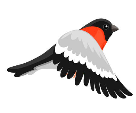 Side view of flying Bullfinch bird Flat cartoon character design. Colorful bird icon. Cute bullfinch template. Winter bird. Vector illustration isolated on white background.