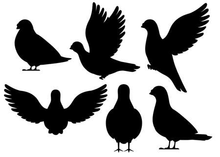 Black silhouette. Icon set of Pigeon bird flying and sitting.