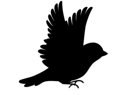 Silhouette noire. Vue latérale de l'oiseau Sparrow volant.