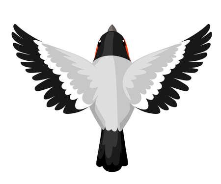 Top view of flying Bullfinch bird Flat cartoon character design.