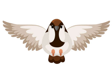 Front view of flying Sparrow bird. Flat cartoon character design.