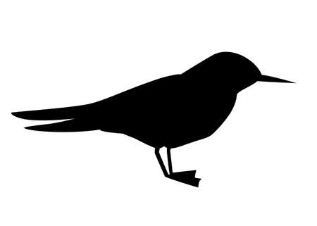 Black silhouette. Flying white bird. Arctic Tern. Sterna hirundo. Arctic animal, cartoon flat design. Vector illustration isolated on white background.
