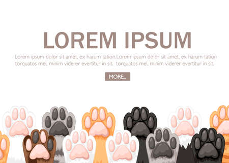 Pattern of different color cat paws icon collection. Cute cat foot set. Concept for greetings card design. Flat vector illustration on white background with plate for text. Website or app button.