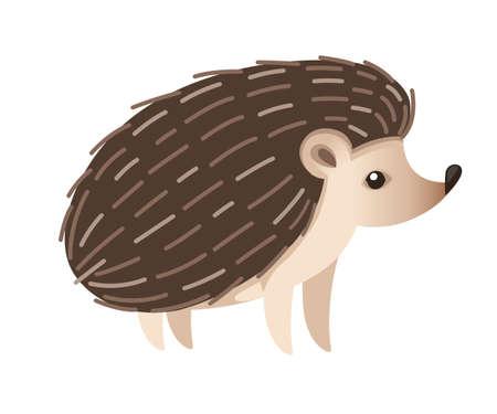 Cute hedgehog. Mammals subfamily Erinaceinae. Cartoon animal design. Flat vector illustration isolated on white background. Forest inhabitant.