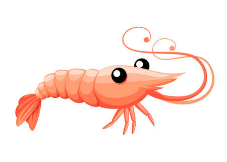 Cute shrimp. Cartoon animal character design. Swimming crustaceans. Flat vector illustration isolated on white background.