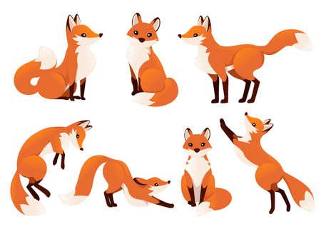 Ensemble de renard dessin animé mignon.