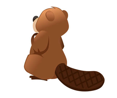 Cute brown beaver sitting. Cartoon character design. North American beaver Castor canadensis. Rodentia mammals. Happy animal. Flat vector illustration isolated on white background. Back view. Illustration