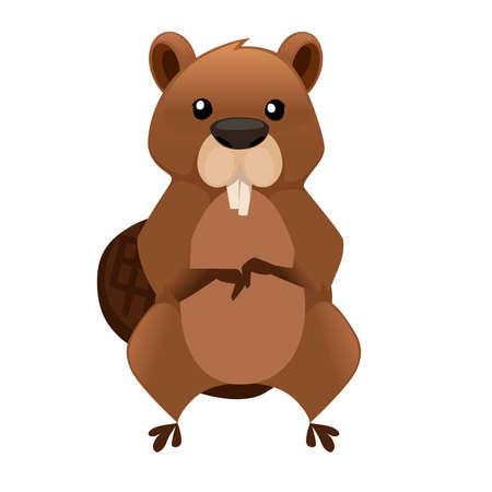 Cute brown beaver sitting. Illustration