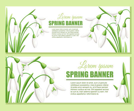 Snowdrop advertising greetings card design. Flat vector illustration. Spring flower, white galanthus. Place for text.