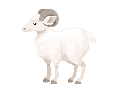 White horned mountain ram sheep cartoon character design flat vector animal illustration isolated on white background.