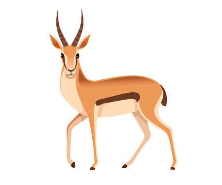 Gazelle à queue noire sauvage africaine avec de longues cornes dessin animé animal design plat