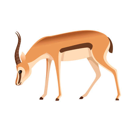 African wild black-tailed gazelle with long horns cartoon animal design flat