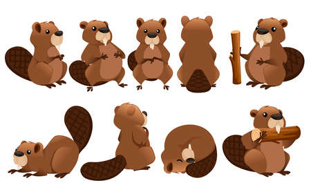 Cute brown beaver icon collection. Cartoon character design.  イラスト・ベクター素材