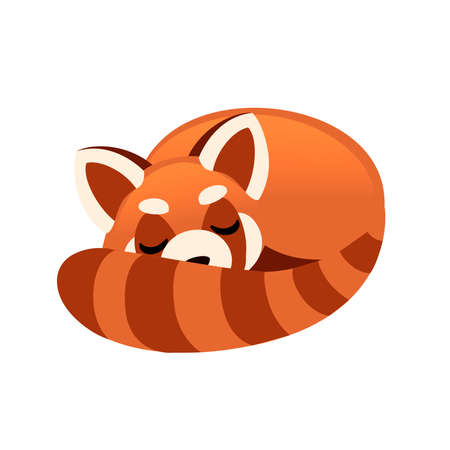 Cute adorable red panda sleeping cartoon design animal character flat