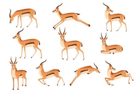 Ensemble de gazelle à queue noire sauvage africaine avec de longues cornes dessin animé animal design plat illustration vectorielle sur fond blanc vue latérale antilope.