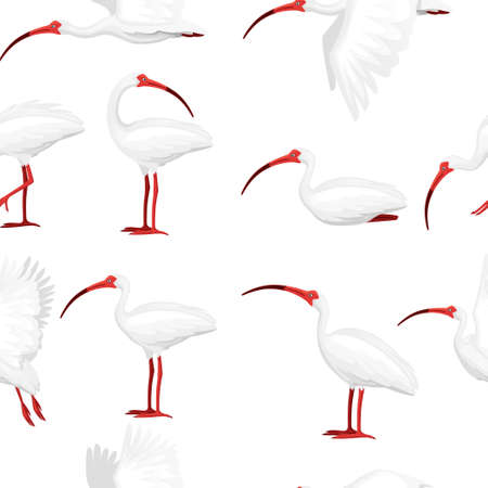 Seamless pattern of american white ibis flat vector illustration cartoon animal design white bird with red beak on white background side view.
