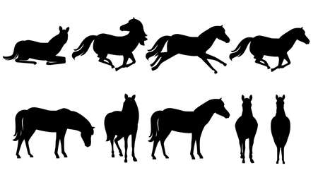 Black silhouette set of brown horse wild or domestic animal cartoon design flat vector illustration isolated on white background.