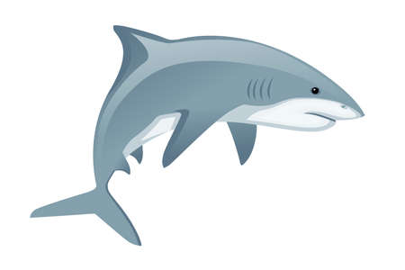 Shark with mouth closed giant apex predator cartoon animal design flat vector illustration isolated on white background.