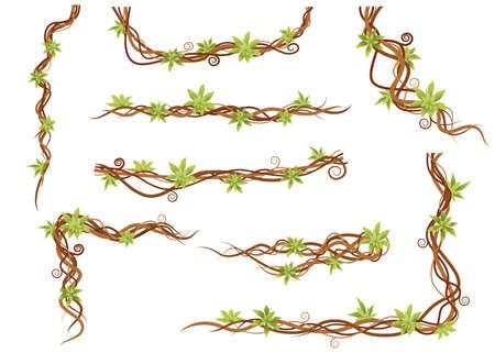 Vine plant set green wild lianas branches