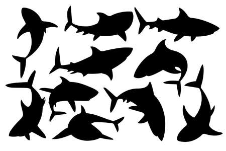 Black silhouette set of shark with mouth closed in different poses Shark Stok Fotoğraf - 128811434