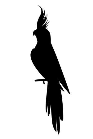 Black silhouette adult parrot of normal grey cockatiel sitting on branch (Nymphicus hollandicus, corella) cartoon bird design flat vector illustration isolated on white background.