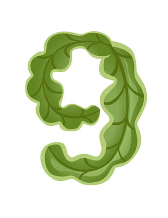 Green lettuce number 9 style vegetable food cartoon design flat vector illustration isolated on white background.